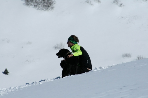 Checking out the Alaskan mountains with Star the dog